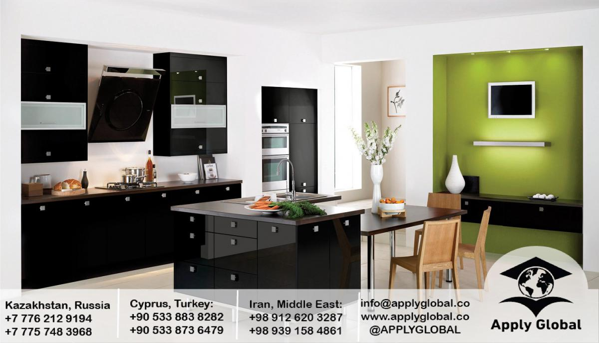 remodeling-kitchen-Gloss-Black-contemporary-design-ideas3